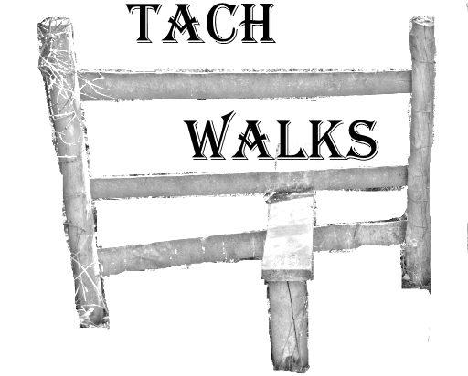 Explore Bishops Tachbrook