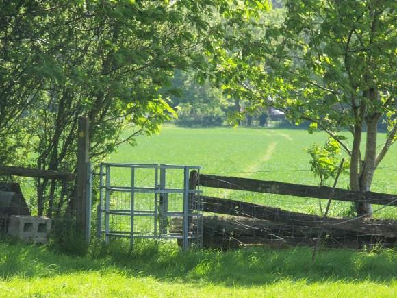 Second gate follow the 'trodden' footpath